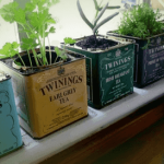 19-indoor-herb-garden-ideas-min