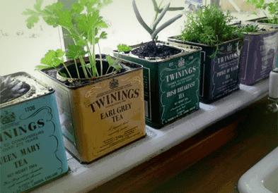 19-indoor-herb-garden-ideas-min