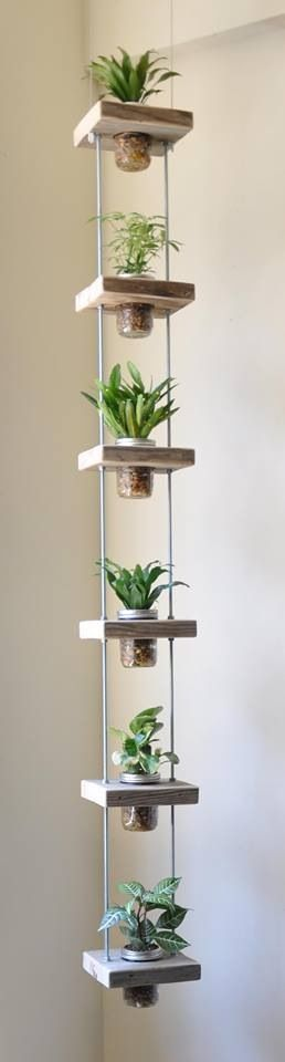 Indoor-Hanging-Jar-Herb-Garden
