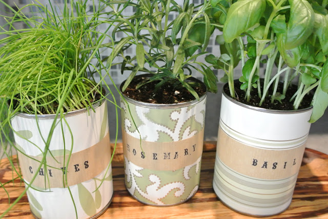 Indoor-Herb-Garden-with-Upcycled-Tin-Cans