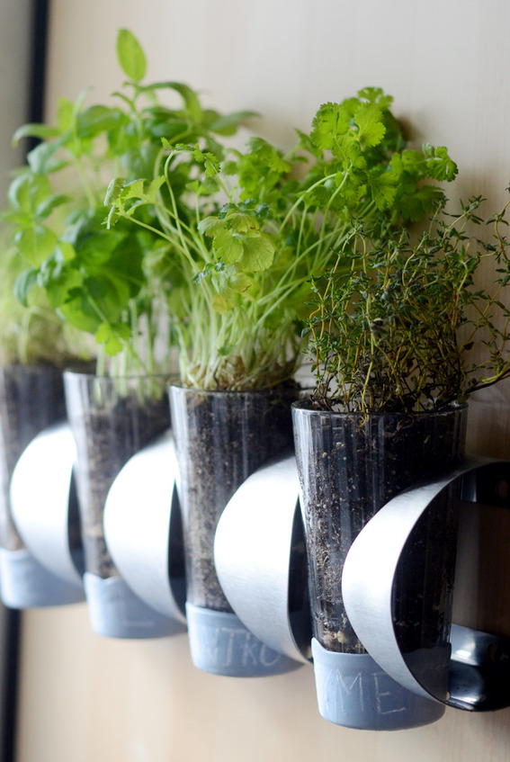 Indoor-IKEA-Herb-Garden