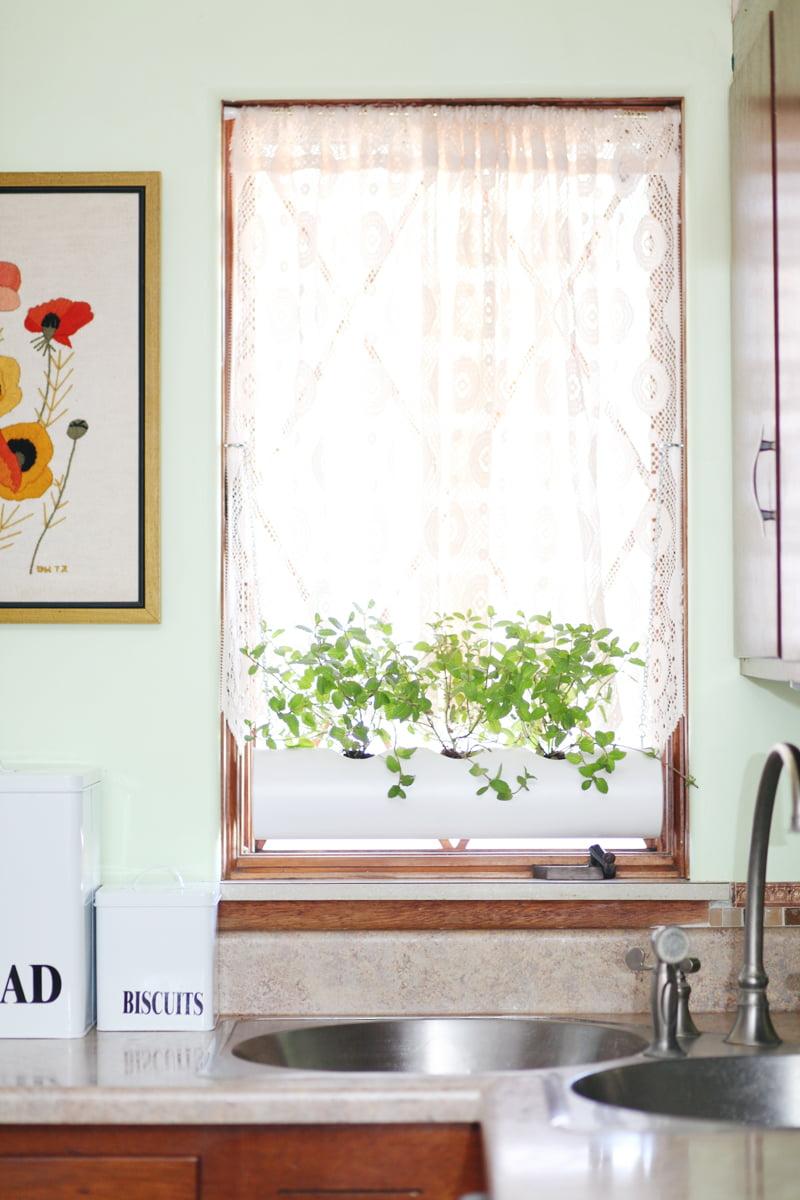 Indoor-PVC-Herb-Garden