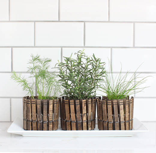 herb-planter-linen-pin