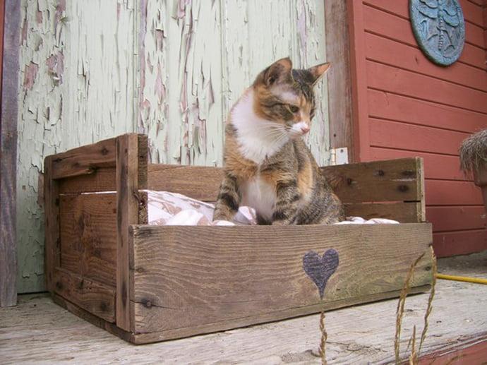 pallet-cat-bed