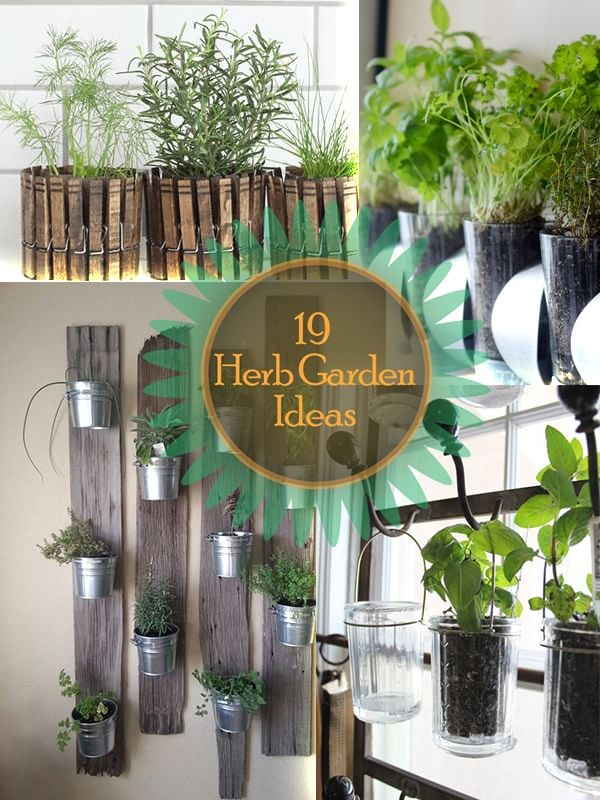 vertical-herb-planter