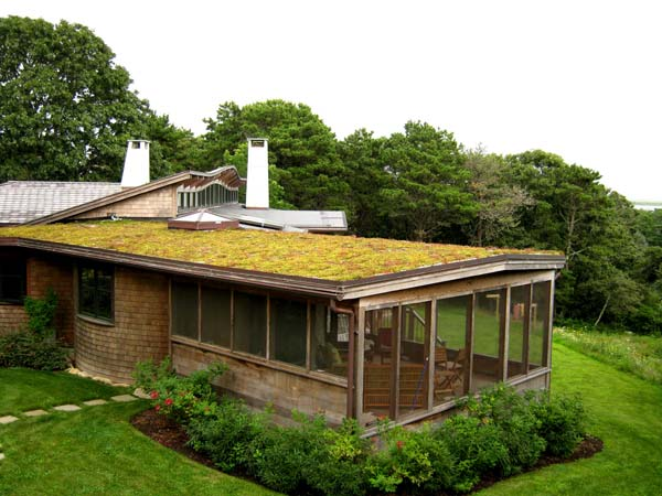 green-living-roof-installer-companies-32