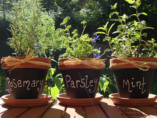 outside herb pots chalkboard painted clay pots