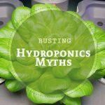 hydroponics myths