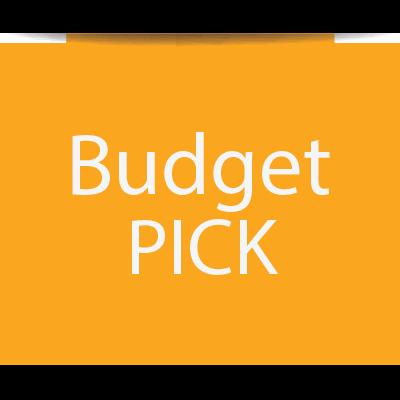 budget-pick