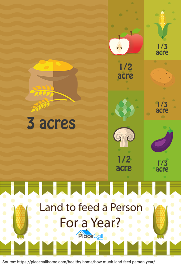 how-much-land-needed-to-feed-a-person-for-a-year