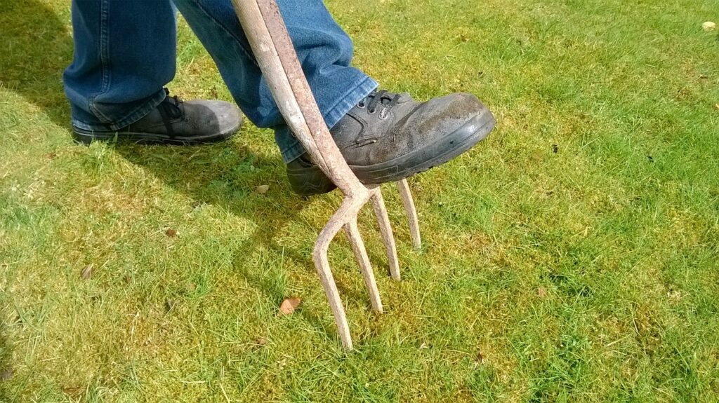 Can You Aerate In The Summer